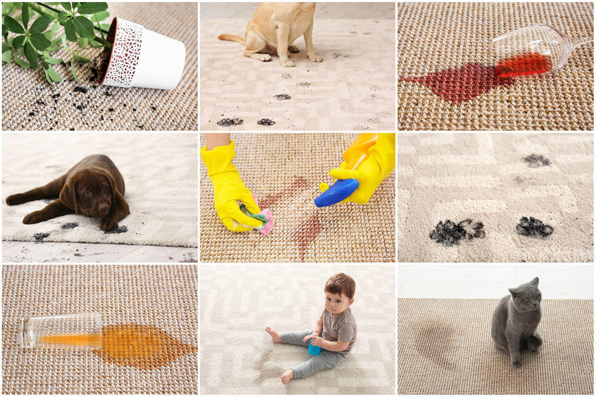 different types of dirt on carpets.