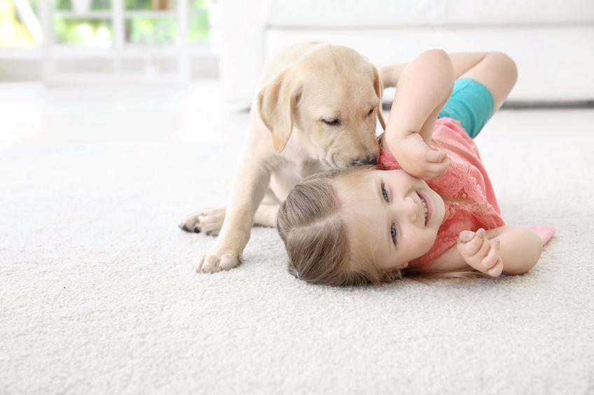 dog and girl on carpet
